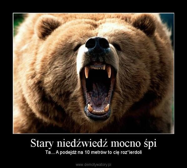 Stary niedźwiedź mocno śpi – Ta... A podejdź na 10 metrów to cię roz*ierdoli