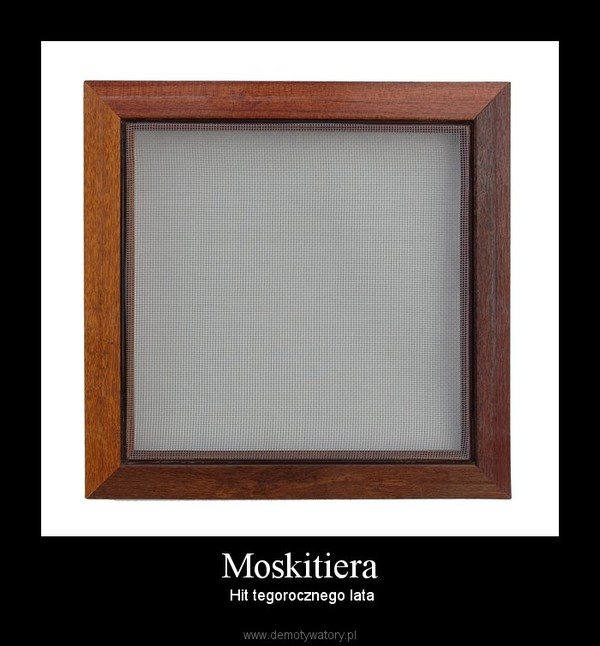 Moskitiera –  Hit tegorocznego lata