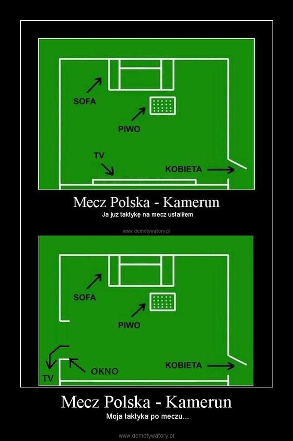 Mecz Polska - Kamerun –  Moja taktyka po meczu...