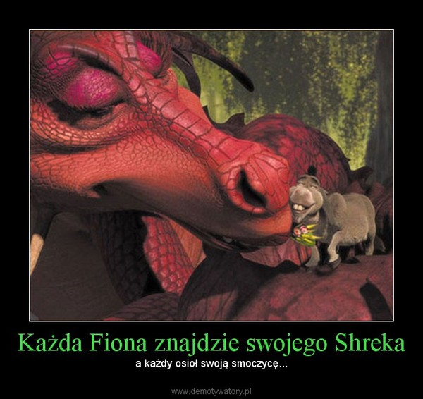 Każda Fiona znajdzie swojego Shreka – a każdy osioł swoją smoczycę...