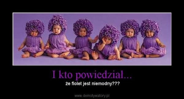 I kto powiedział... – że fiolet jest niemodny???