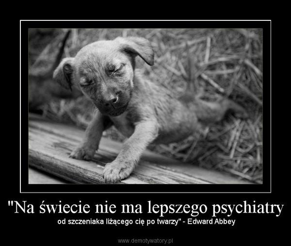 """""""Na świecie nie ma lepszego psychiatry – od szczeniaka liżącego cię po twarzy"""" - Edward Abbey"""