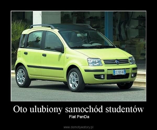 Oto ulubiony samochód studentów – Fiat PanDa