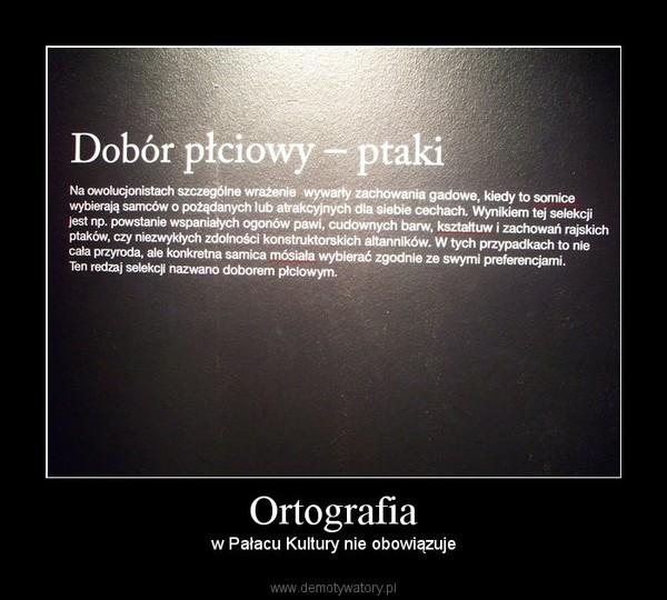 Ortografia – w Pałacu Kultury nie obowiązuje