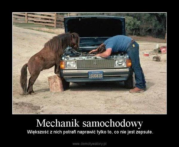 Mechanik samochodowy – Większość z nich potrafi naprawić tylko to, co nie jest zepsute.