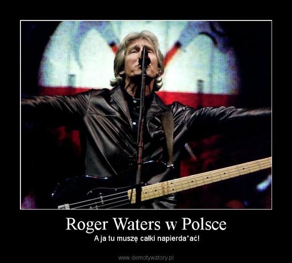 Roger Waters w Polsce – A ja tu muszę całki napierda*ać!