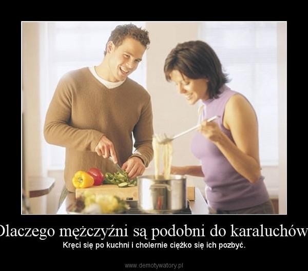 Dlaczego mężczyźni są podobni do karaluchów? – Kręci się po kuchni i cholernie ciężko się ich pozbyć.