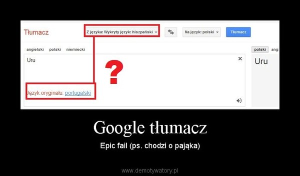 Google tłumacz – Epic fail (ps. chodzi o pająka)