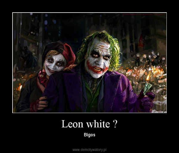 Leon white ? – Bigos