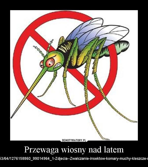 Przewaga wiosny nad latem – http://images04.olx.pl/ui/6/53/64/1276158860_99014964_1-Zdjecia--Zwalczanie-insektow-komary-muchy-kleszcze-mrowki-itp-1276158860.jpg