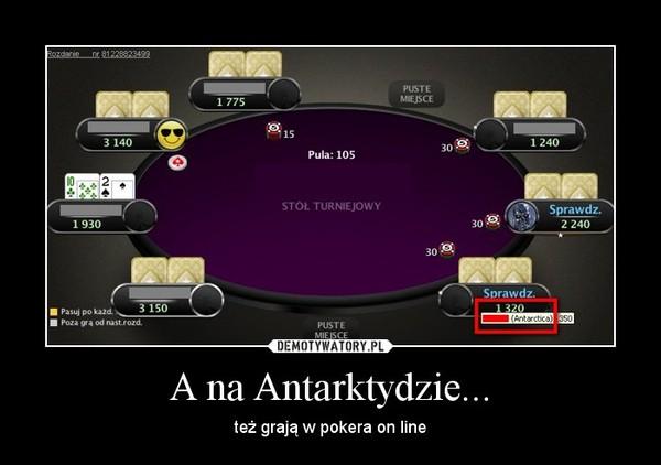 A na Antarktydzie... – też grają w pokera on line