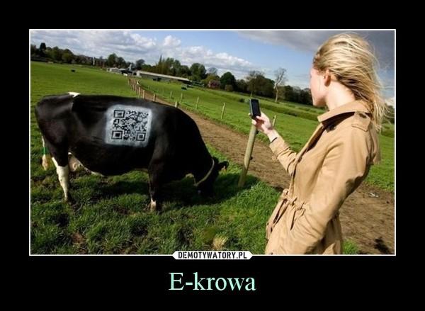 E-krowa –