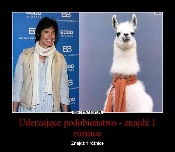 Uderzające podobieństwo - znajdź 1 różnice – Znajdź 1 różnice