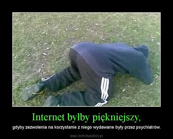 Internet byłby piękniejszy, – gdyby zezwolenia na korzystanie z niego wydawane były przez psychiatrów.