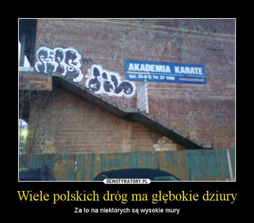 Wiele polskich dróg ma głębokie dziury