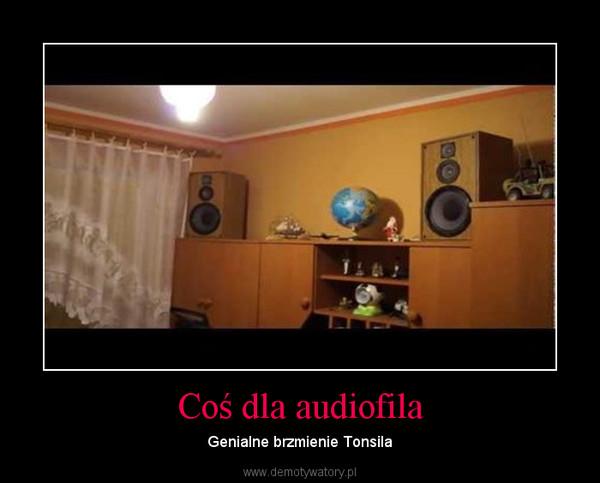 Coś dla audiofila – Genialne brzmienie Tonsila