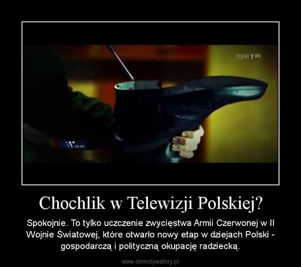 Chochlik w Telewizji Polskiej? – Spokojnie. To tylko uczczenie zwycięstwa Armii Czerwonej w II Wojnie Światowej, które otwarło nowy etap w dziejach Polski - gospodarczą i polityczną okupację radziecką.