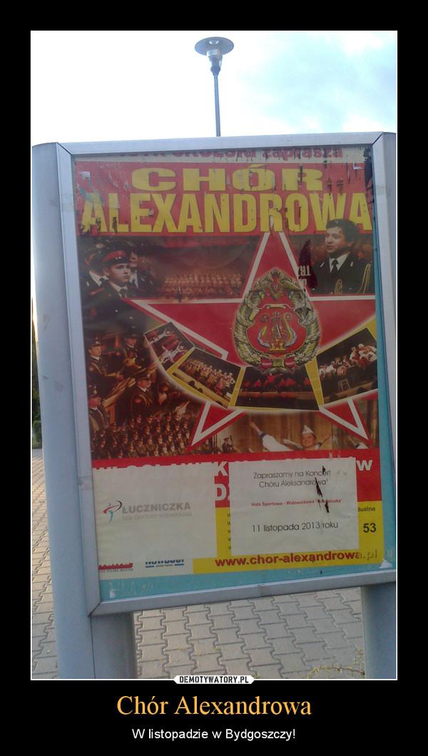 Chór Alexandrowa – W listopadzie w Bydgoszczy!