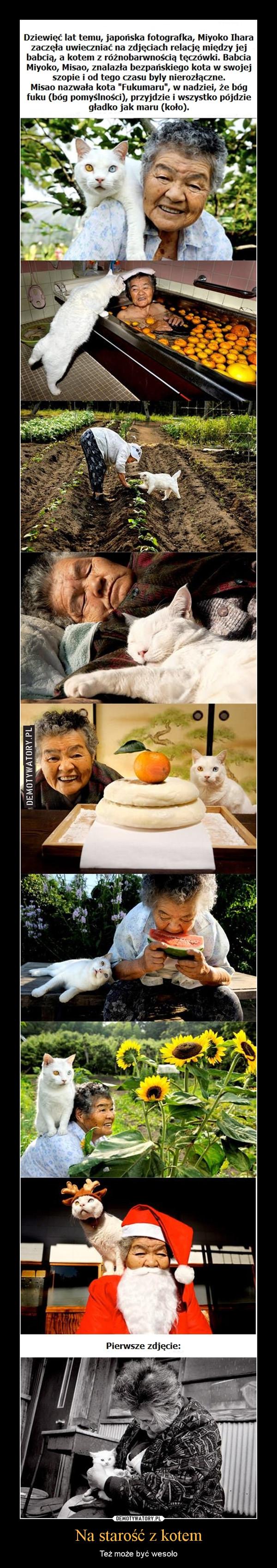 Na starość z kotem – Też może być wesoło