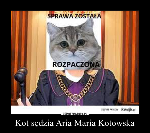 Kot sędzia Aria Maria Kotowska –