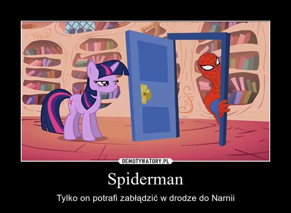 Spiderman – Tylko on potrafi zabłądzić w drodze do Narnii