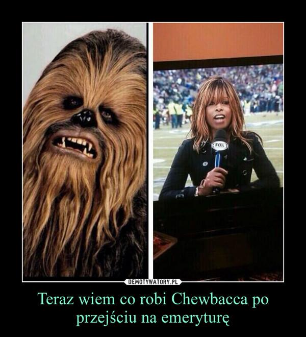 Teraz wiem co robi Chewbacca po przejściu na emeryturę –