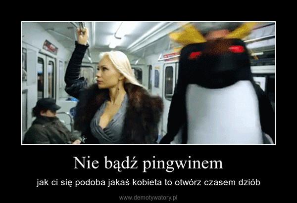 Nie bądź pingwinem – jak ci się podoba jakaś kobieta to otwórz czasem dziób