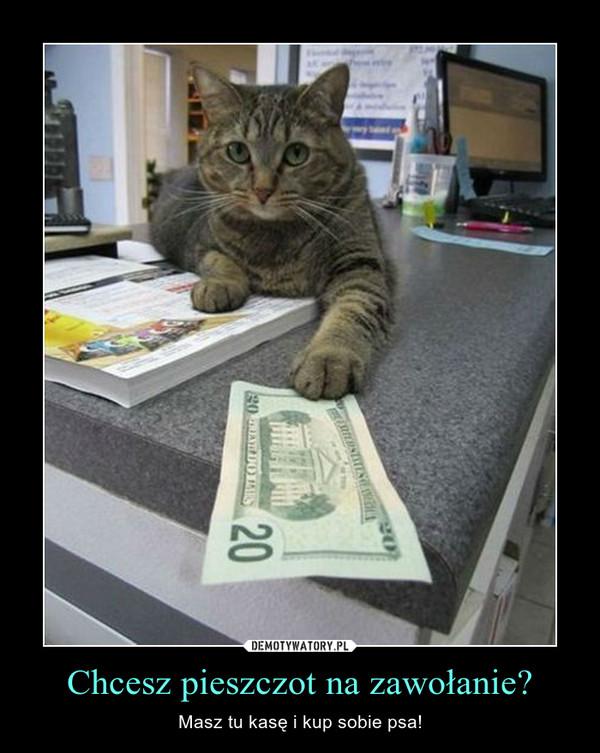 Chcesz pieszczot na zawołanie? – Masz tu kasę i kup sobie psa!