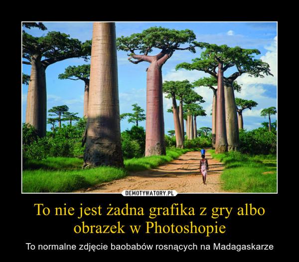 To nie jest żadna grafika z gry albo obrazek w Photoshopie – To normalne zdjęcie baobabów rosnących na Madagaskarze