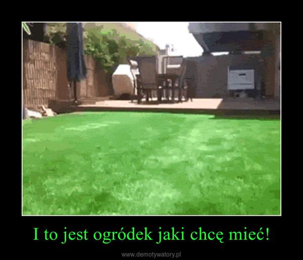 I to jest ogródek jaki chcę mieć! –