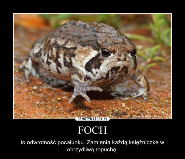 FOCH – to odwrotność pocałunku. Zamienia każdą księżniczkę w obrzydliwą ropuchę.
