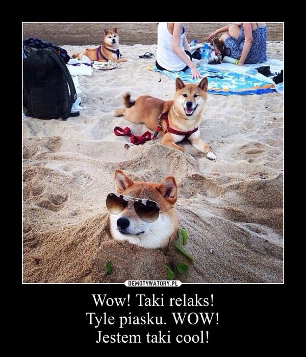 Wow! Taki relaks!Tyle piasku. WOW!Jestem taki cool! –