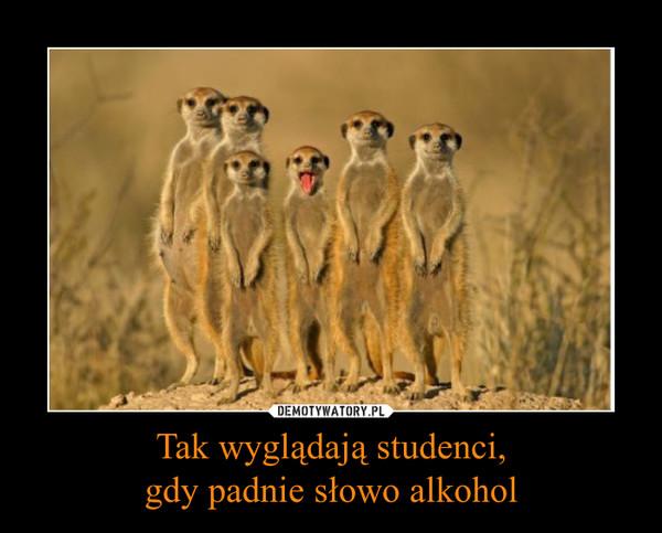 Tak wyglądają studenci,gdy padnie słowo alkohol –