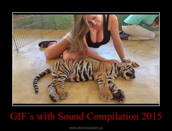 GIF´s with Sound Compilation 2015 –