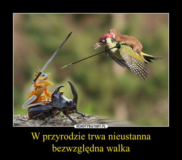W przyrodzie trwa nieustanna bezwzględna walka –
