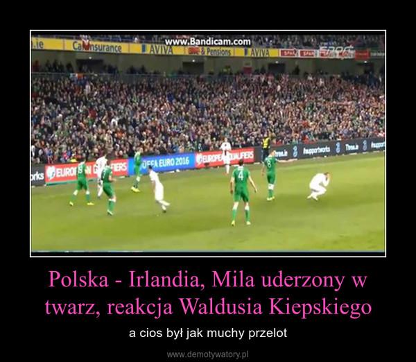 Polska - Irlandia, Mila uderzony w twarz, reakcja Waldusia Kiepskiego – a cios był jak muchy przelot