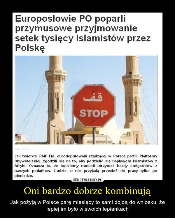 Oni bardzo dobrze kombinują – Jak pożyją w Polsce parę miesięcy to sami dojdą do wniosku, że lepiej im było w swoich lepiankach