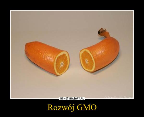 Rozwój GMO –