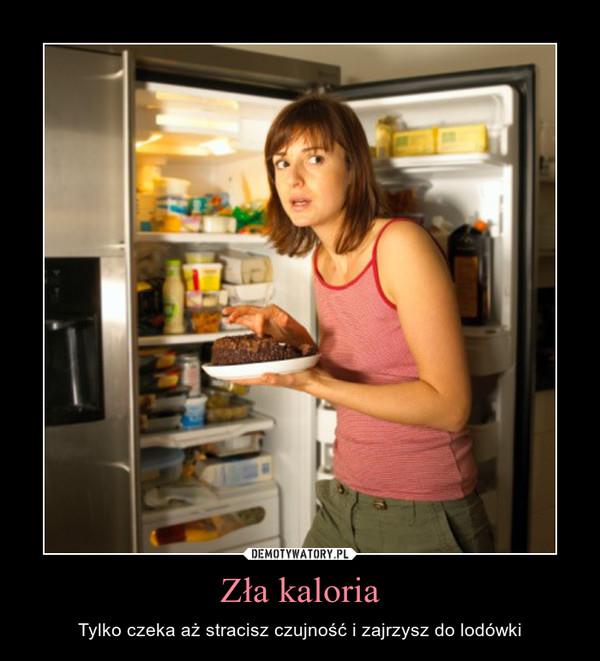 Zła kaloria – Tylko czeka aż stracisz czujność i zajrzysz do lodówki