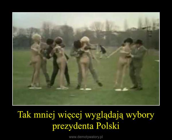 Tak mniej więcej wyglądają wybory prezydenta Polski –