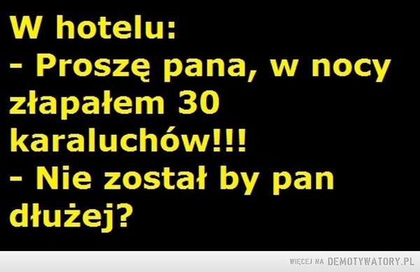 Hotel –
