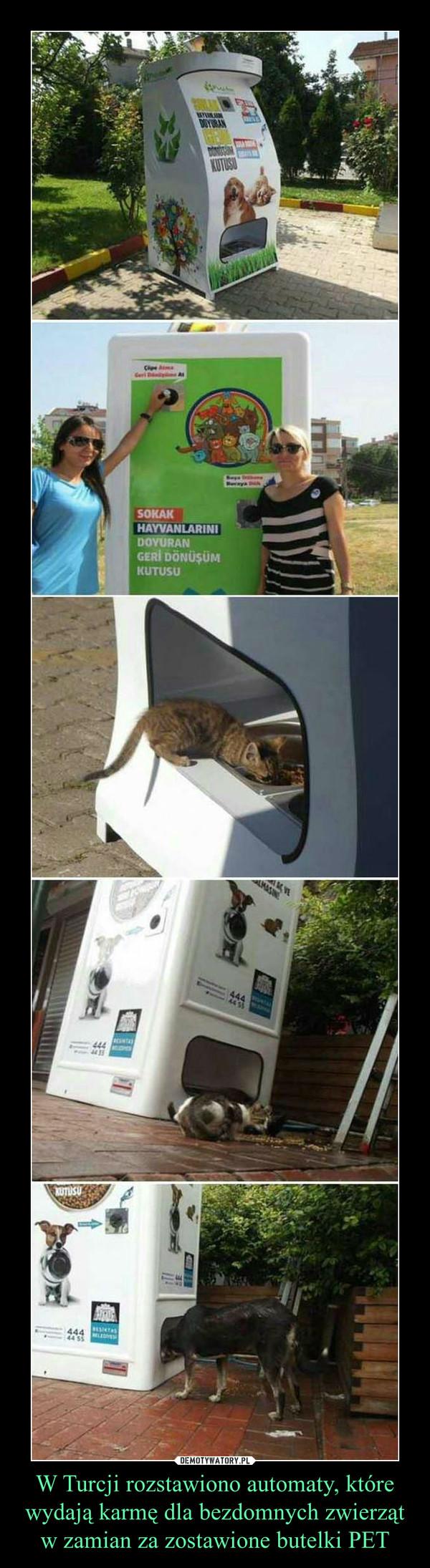 W Turcji rozstawiono automaty, które wydają karmę dla bezdomnych zwierząt w zamian za zostawione butelki PET –