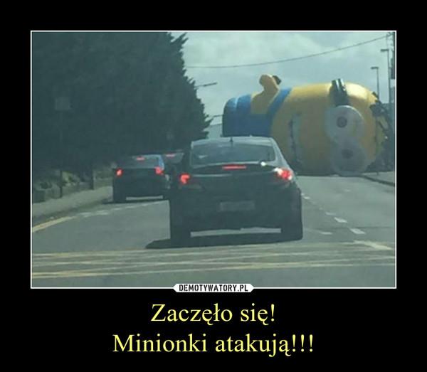 Zaczęło się!Minionki atakują!!! –