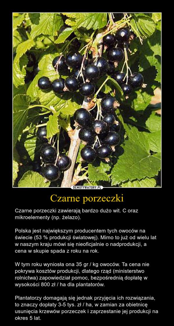 Czarne porzeczki – Czarne porzeczki zawierają bardzo dużo wit. C oraz mikroelementy (np. żelazo).Polska jest największym producentem tych owoców na świecie (53 % produkcji światowej). Mimo to już od wielu lat w naszym kraju mówi się nieoficjalnie o nadprodukcji, a cena w skupie spada z roku na rok.W tym roku wyniosła ona 35 gr / kg owoców. Ta cena nie pokrywa kosztów produkcji, dlatego rząd (ministerstwo rolnictwa) zapowiedział pomoc, bezpośrednią dopłatę w wysokości 800 zł / ha dla plantatorów.Plantatorzy domagają się jednak przyjęcia ich rozwiązania, to znaczy dopłaty 3-5 tys. zł / ha, w zamian za obietnicę usunięcia krzewów porzeczek i zaprzestanie jej produkcji na okres 5 lat.