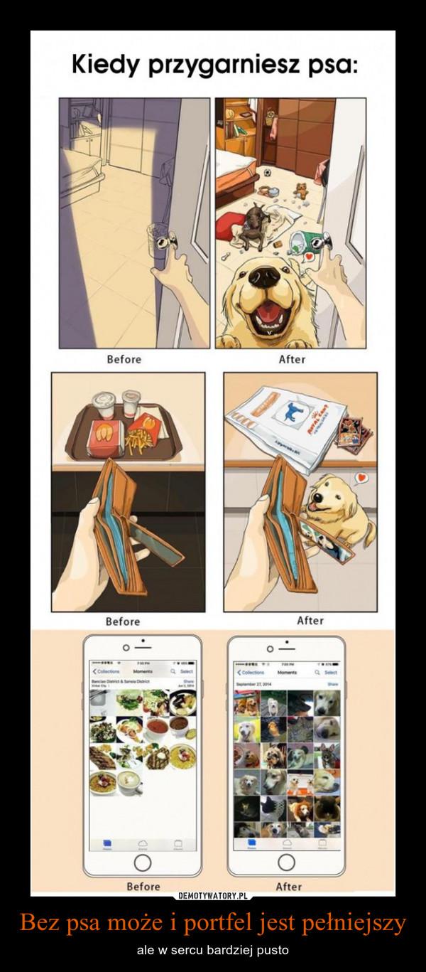 Bez psa może i portfel jest pełniejszy – ale w sercu bardziej pusto