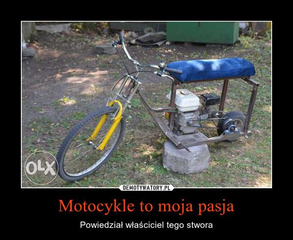 Motocykle to moja pasja – Powiedział właściciel tego stwora