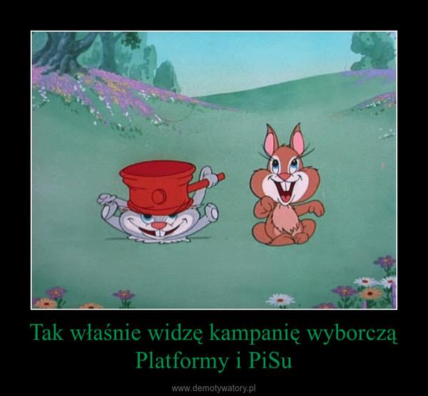 Tak właśnie widzę kampanię wyborczą Platformy i PiSu –