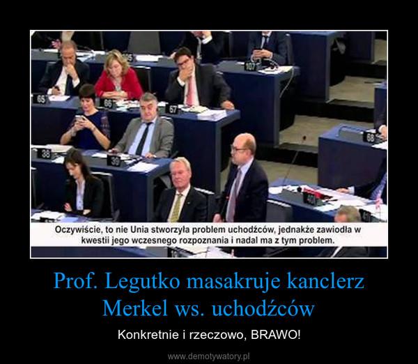Prof. Legutko masakruje kanclerz Merkel ws. uchodźców – Konkretnie i rzeczowo, BRAWO!