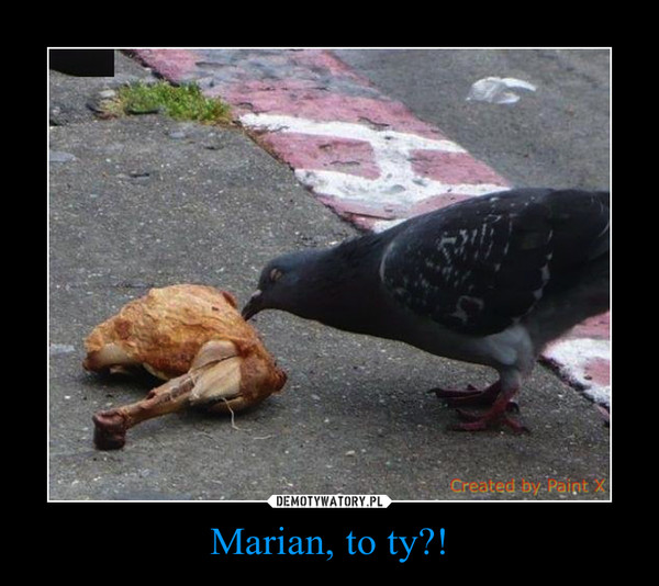 Marian, to ty?! –