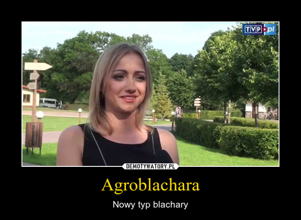 Agroblachara – Nowy typ blachary